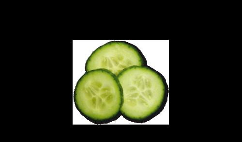 gurken 1